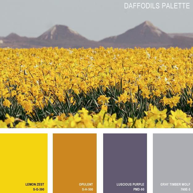 Daffodils palette