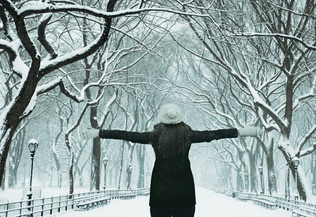داستان کوتاه: عصر یخی «شکوفه آزادگان»
