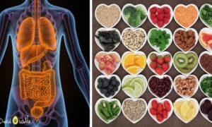 راهنمای سم زدایی بدن؛ سموم عامل بسیاری از بیماری ها هستند