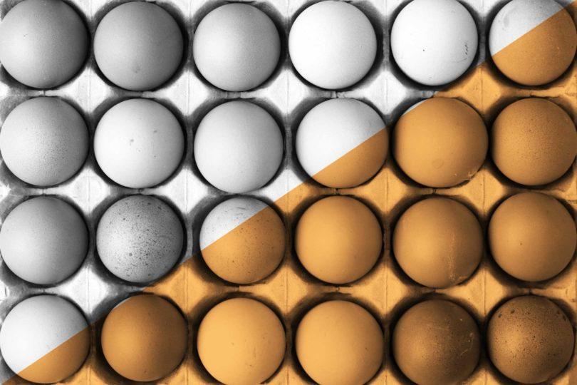 تخم مرغ قهوه ای بهتر است یا سفید