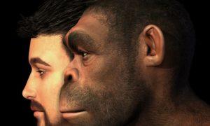 دانشمندان بدون استخوان، DNA انسان های باستانی