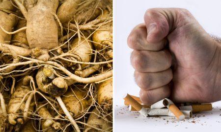 herb-quit-smoking-FI