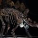 خطای دایناسور موجود در موزه تاریخ طبیعی لندن ؛ موضوعی که چارلی ۱۰ ساله پی به آن برد!