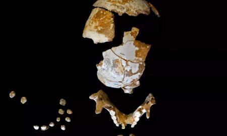 کودک نئاندرتال با قدمت 50 هزار سال
