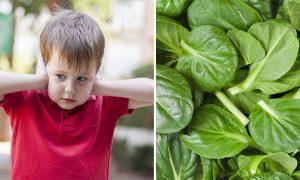 غذاهای حاوی اسید فولیک و منابع ویتامین b 9 یا قرص فولیک اسید