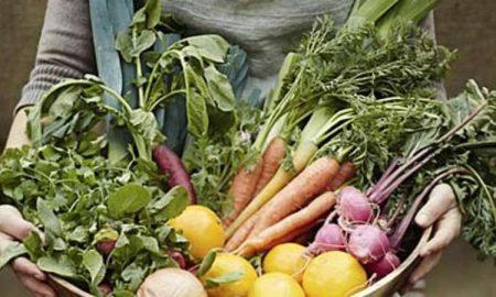 افزایش متابولیسم مواد غذایی چربی سوز