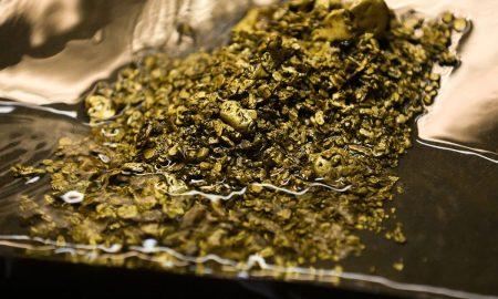 طلا از فاضلاب سوئیس