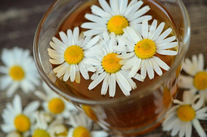 از بین بردن التهابات، رفع درد، خواب راحت و آرامش اعصاب و از همه مهمتر آرامش اعصاب معده کار تخصصی چای بابونه است