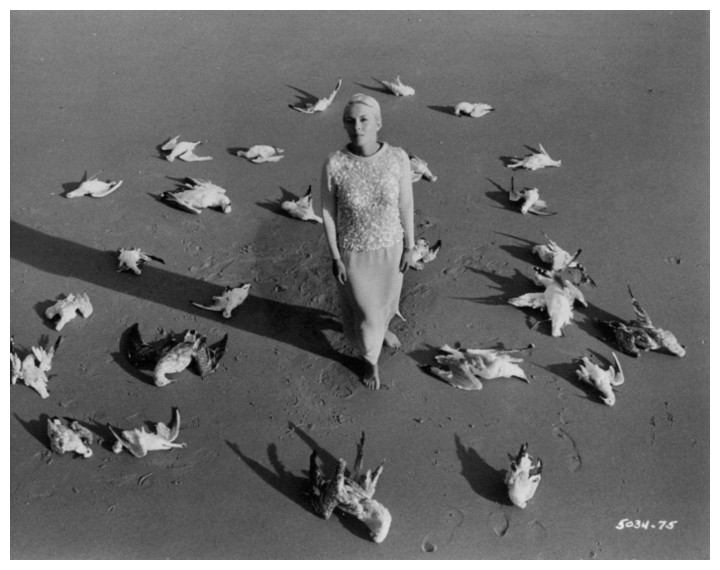"""در تمام داستانهای مجموعه پرندگان میروند و در پرو میمیرند The Birds Come to Die in Peru شخصیت اصلی ماجرا از تمام دنیا و ماجرای آن کناره گرفتهاند. """"ژاک رینه"""" داستان اول بعد از جنگهای بسیار در سراسر دنیا برای دستیابی به عدالت و آزادی اکنون مالک قهوهخانهای دورافتاده در ماسهزارهای ساحل پرو است."""