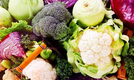نگهداری خواص میوه و سبزیجات