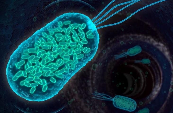"""باکتریهای مهندسی شده با """"gas vesicle """" (باکتری گاز)، درون بدن."""