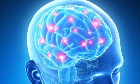 تشخیص دروغگویی با اسکن مغزی