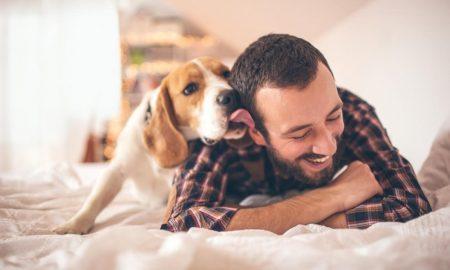 چرا سگ عاشق دیدن خنده های شماست!؟