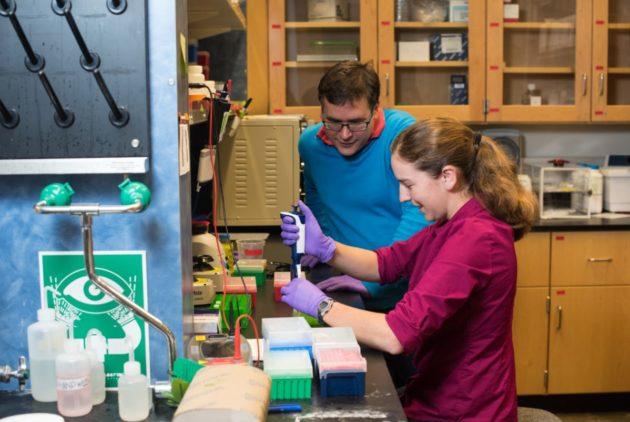 شرکت مایکروسافت با همکاری محققان دانشگاه واشنگتن موفق به ذخیره سازی 200 مگابایت اطلاعات در توالی DNA و بازیابی موفق آن شد!!