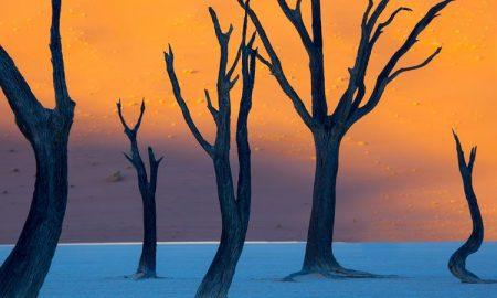 عکسی از پارک ملی نامبیا که بیشتر شبیه نقاشی است تا عکس