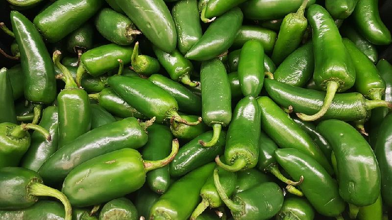 فلفل سبز مکزیکی