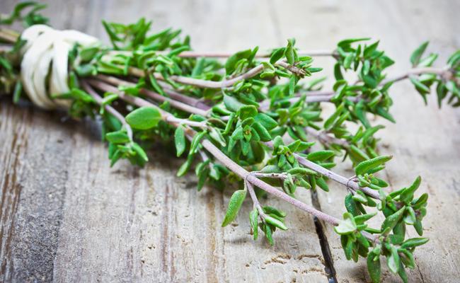 سبزی معطر Thyme