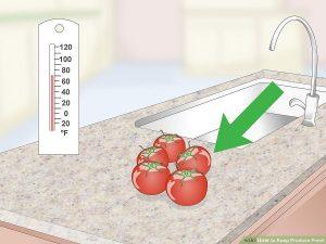 گوجه فرنگی تازه نگه داشتن انواع میوه