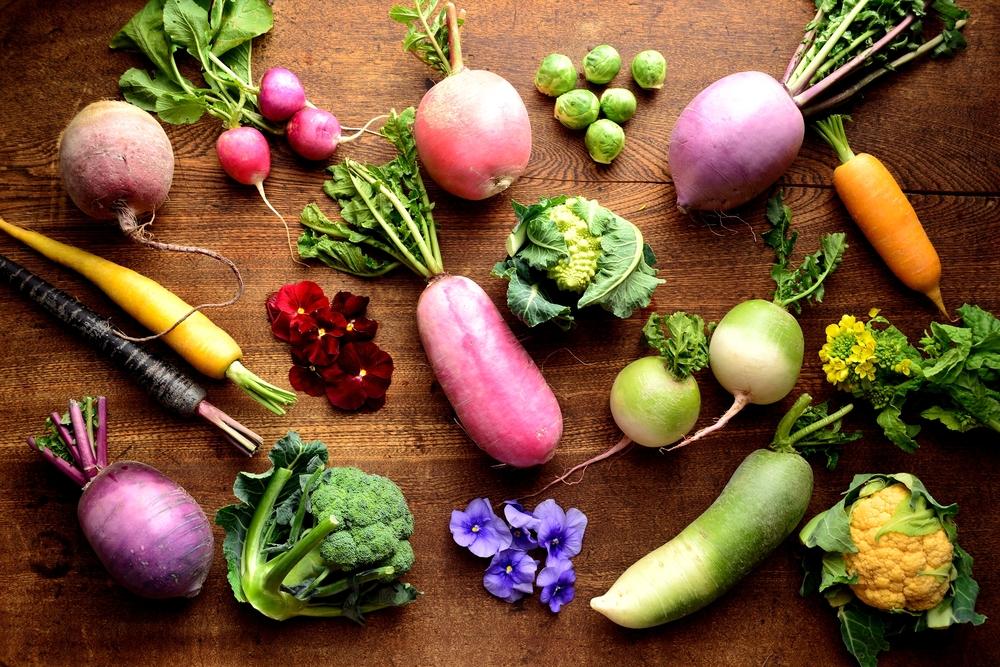 سبزیجات ریشه دار