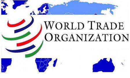 سازمان جهاني تجارت كه از ابتداي سال 1995 ميلادي براي مديريت مناسبات تجارت چنـد جانبه بيـنالمللي جايگزين گات شد، اكنون به يك سازمان بزرگ جهاني تبديل شده است.