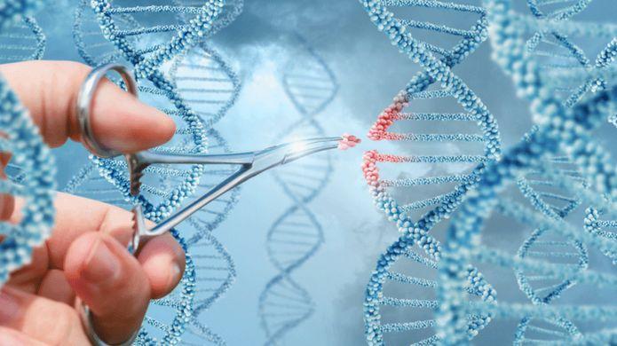 بعضی از این هکر ها پا را از نیز فراتر گذاشته و به دنبال تغییرات ژنی در بدن خود هستند