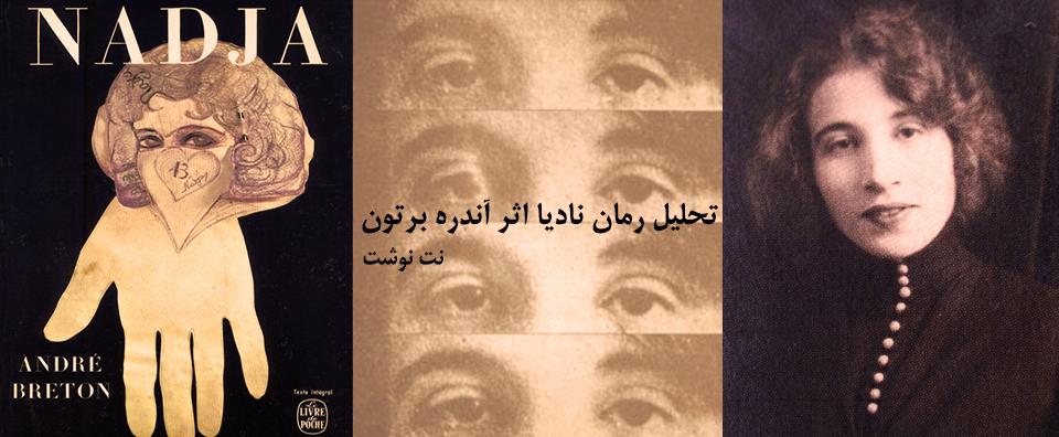 رمان نادیا با زبان تصویر روایت شده است. در زبان رؤیا نیز ما با تصاویری مواجهیم که با زبان رمز، نماد و نشانه حرف میزنند. رمان نادیا بدون روایت تصویری گوئی الکن باقی میماند و کلیدهای گشایش رمزهایش گم میشود.
