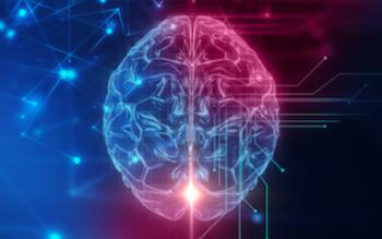 تولید سلول عصبی مغز تا ۱۳ سالگی