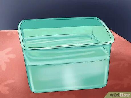 ظرف پرآب برای استحمام همستر