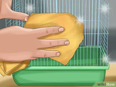 تمیز کردن قفس همستر