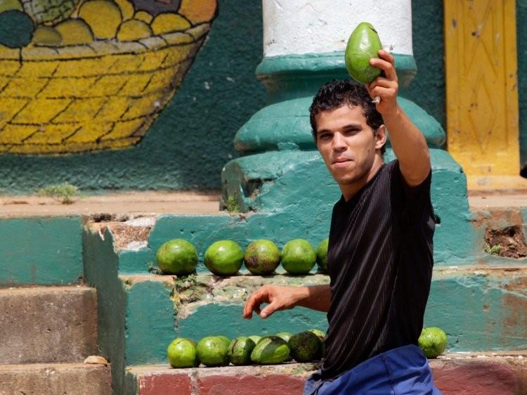 آووکادو، سرشار از چربی غیر اشباع