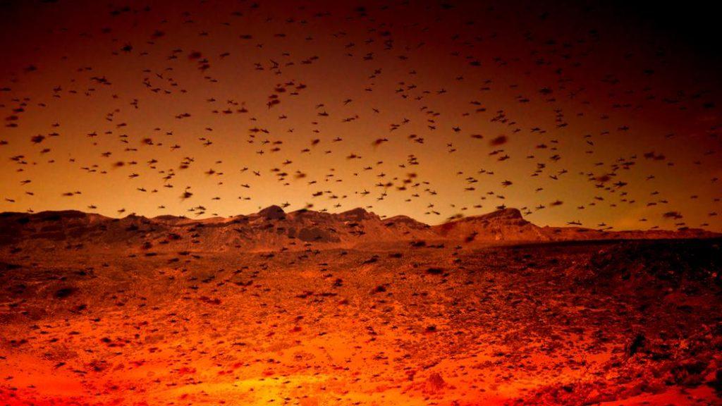 اکتشاف در مریخ به وسیله ی ربات های زنبوری شکل!