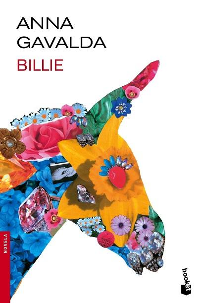رمان بیلی Billie حجم کمی دارد و در حدود صد و هشتاد صفحه است. اما در همین حجم کم سعی دارد تمام زندگی بیلی و به تبع آن فرنک را از بچگی تا آشنایی آنها با هم تا ایام جوانی و حالا روایت کند. و محدودهی زمانی که انتخاب کرده بسیار طولانی و حاوی اتفاقات و پیرنگهای فراوانی است.