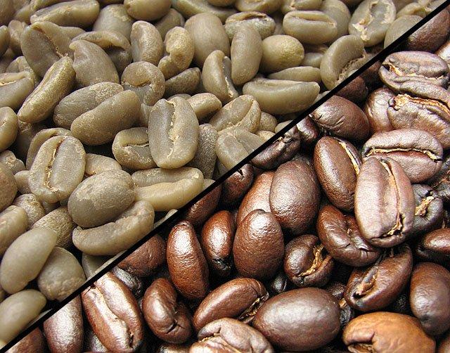 اسید کلورژنیک یک نوع آنتی اکسیدان بسیار قوی است که در قهوه برشته شده کمتر از قهوه خام وجود دارد
