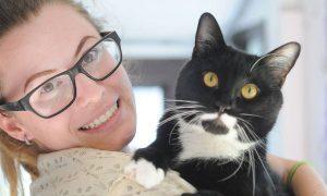 راهنمای مراقبت از گربه کور