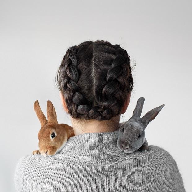 در ابتدا خرگوش خود را مجبور کنید به تنهایی قفس خود را ترک کند و به شما برسد. اجازه دهید یک منطقه امن خرگوشی را کشف کند.