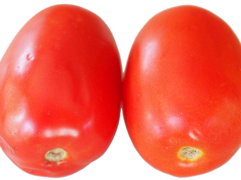 روش نگهداری گوجه فرنگی
