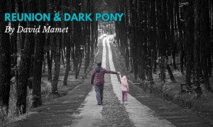 نمایشنامه اسب کوچک سیاه اثر دیوید ممت