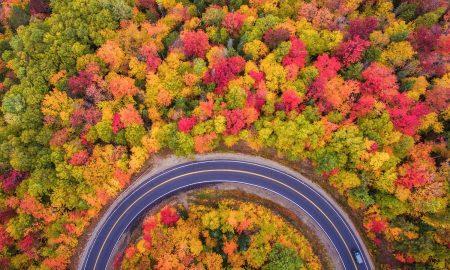 سفر به چالوس و دیدنی های شمال در فصل پاییز