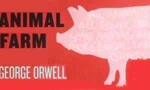 تحلیل رمان قلعه حیوانات Animal Farm ؛ همه برابرند بعضی ها برترند.