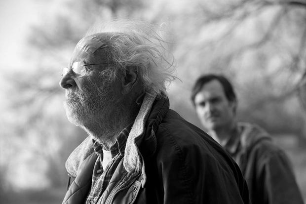 موضوع یک میلیون دلار در زندگی وودی با بازی درخشان ( Bruce Dern) که پیرمردی دائم الخمر و افسرده است باعث میشود زندگی راکد و بی معنایش دوباره جریان پیدا کند و معنادار شود.
