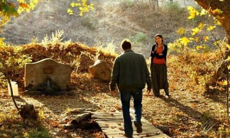 نقد فیلم The Wild Pear Tree ساختهی نوری بیلگه جیلان