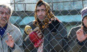 من دیوانه نیستم فیلمی از علیرضا امینی