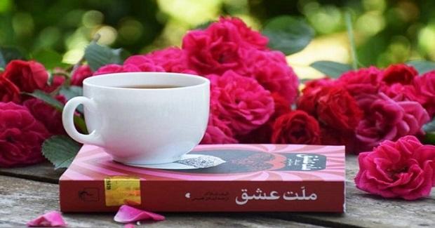 به نظر میرسد که الیف شافاک در رمان ملت عشق از داستان شمس و مولوی و احوالات آنها بهرهای برده برای بهتر کردن داستان دیگرش که به موازات داستان شمس و مولوی پیش میرود.