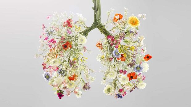 با پاکسازی ریه به سلامتی این عضو مهم بدن کمک بزرگی خواهید کرد