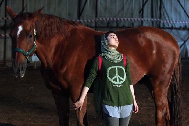 اسب درساژ اسبی مخصوص دشت نیست و بهمسابقهدرپیستنمیپردازد. حرکات ظریفش او را در یک وضعیت ایده آل، قیمتی کرده است به همین خاطر سوارکاربااسب خودحرکاتنمایشیوزیباانجاممیدهد.