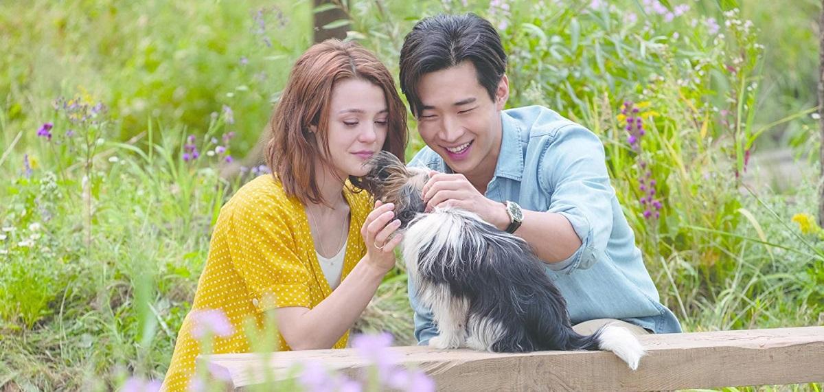 فیلم A Dog's Journey ساختهی گیل مانچوسو