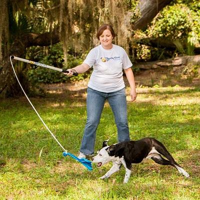 سگ برای گرفتن اسباب بازی جست و خیز میکند و تلاش میکند که اسباب بازی را با دست و یا دهان خود بگیرد. شما اسباب بازی را هدایت میکنید و این به آن معنا است که پس از مدتی میتوانید اسباب بازی را در دسترس سگ قرار دهید و حتما او را تشویق کنید.