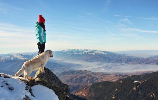 همه میدانند که خصلت وفاداری سگ یکی از برجسته ترین خصلتهای این حیوان بر شمرده میشود که در میان تمامی حیوانات زبانزد است.