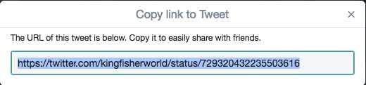 حالا میتوانید بر روی گزینه کپی لینک آدرس (Copy link address) کلیک کنید.