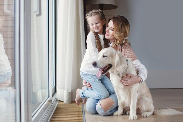 بسیاری از نژادهای سگ برای ارتباط برقرار کردن با کودکان اصلا مناسب نیستند و این گزینه برای افرادی که داخل آپارتمان زندگی میکنند بسیار بد خواهد بود.